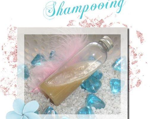 diy recette shampoing fait maison